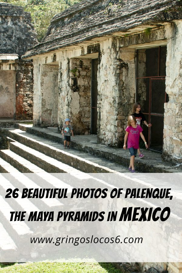 26 Beautiful Photos of Palenque, The Maya Pyramids in Mexico