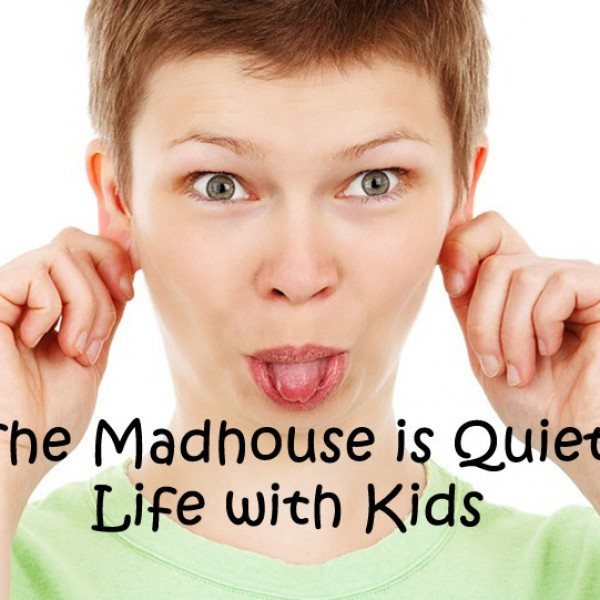 mommy-lives-in-a-madhouse