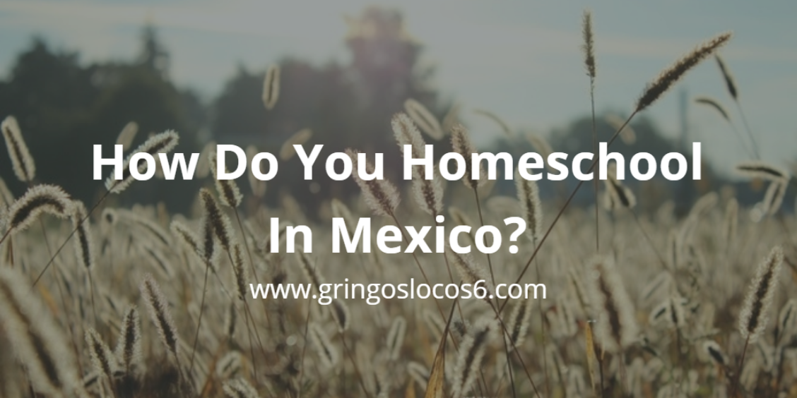 How Do You Homeschool In Mexico? Find out how Tina, from Los Gringos Locos, manages to homeschool and raise four kids in Mexico.